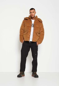 The North Face - SIERRA PARKA UTILIT - Down jacket - utility brown - 3