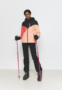 Brunotti - SHEERWATER WOMEN SNOWJACKET - Snowboard jacket - sienna - 1