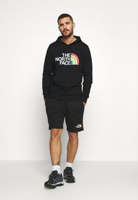 The North Face - RAINBOW HOODY - Mikina s kapucí - black - 1