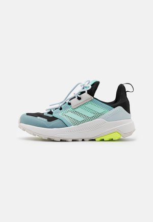 TERREX TRAILMAKER GORE-TEX WANDERSCHUHE - Zapatillas de trail running - core black/clear mint/acid mint