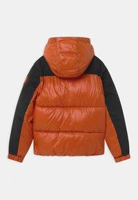 Save the duck - LUMAY - Winter jacket - black/ginger orange - 1