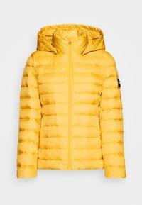 Calvin Klein - COATED ZIP LIGHT JACKET - Down jacket - yellow dahlia - 4