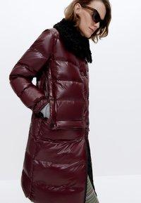 Uterqüe - Winter coat - bordeaux - 3