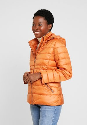 JACKET - Light jacket - pumpkin orange