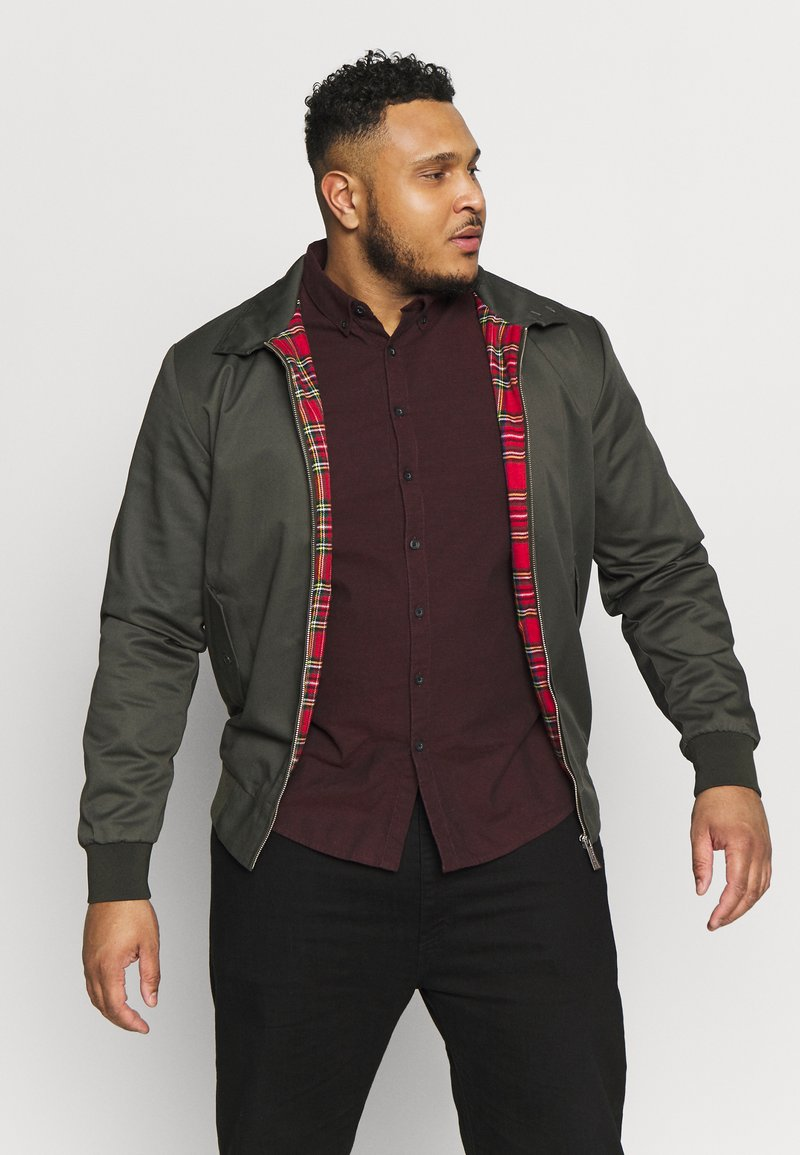 HARRINGTON - Giubbotto Bomber - khaki