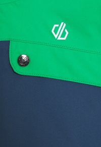 Dare 2B - ENIGMATIC JACKET - Ski jacket - green/grey/dark blue