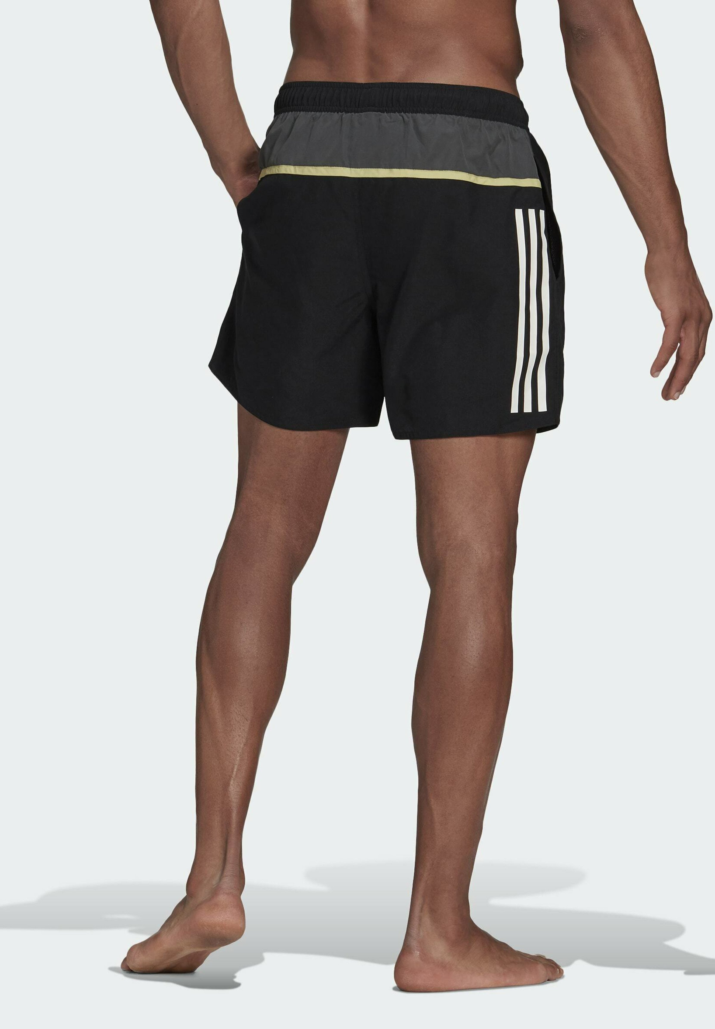 Men BOS3S CLASSICS SL MUST HAVES PRIMEGREEN SWIM SPORTS REGULAR SHORTS - Swimming shorts