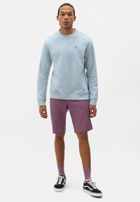 Dickies - Sweatshirt - fog blue - 1
