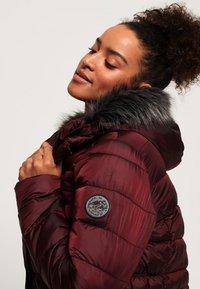 Superdry - TAIKO  - Winter jacket - purple - 3