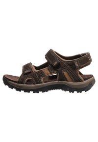 Cat Footwear - GILES - Walking sandals - dark brown - 4