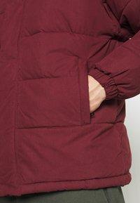 Schott - NEBRASKA - Winter jacket - bordeaux - 5