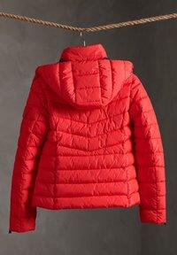 Superdry - Winter jacket - festive red - 1