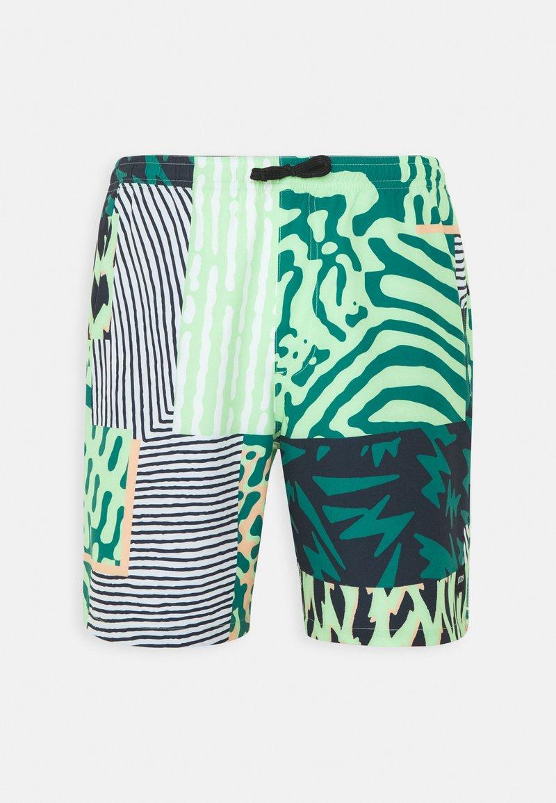Burton - CREEKSIDE  - Outdoor shorts - composite