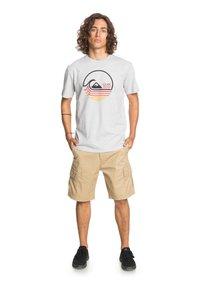 Quiksilver - Print T-shirt - athletic heather - 1