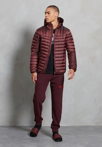 Superdry - CORE LOGO ATHLETICS - Pantalon de survêtement - rich deep burgundy - 0