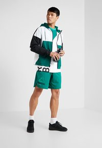 Reebok - OST EPIC GRAPHIC - Sports shorts - green - 1