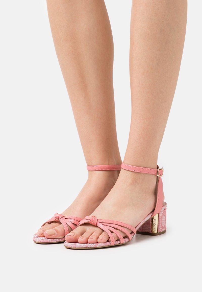 Coach - ELOUISE - Sandals - taffy