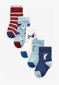 Next - 5 PACK DOG - Ponožky - blue - 0
