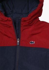 Lacoste - BLOUSON - Winter jacket - bordeaux/navy blue - 3