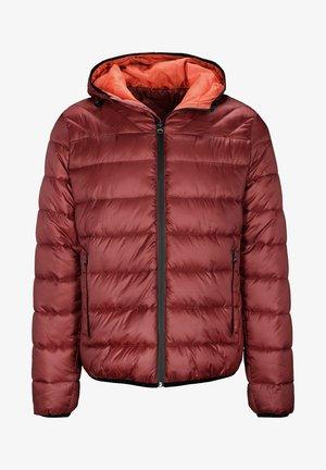 PUFFER  - Winter jacket - rot