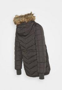Seraphine - EVEREST - Winter coat - slate - 1