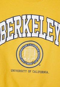 Name it - BERKELEY UNIVERSITY - Sweater - spicy mustard - 3