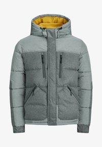 Jack & Jones - Winter jacket - light grey melange - 5