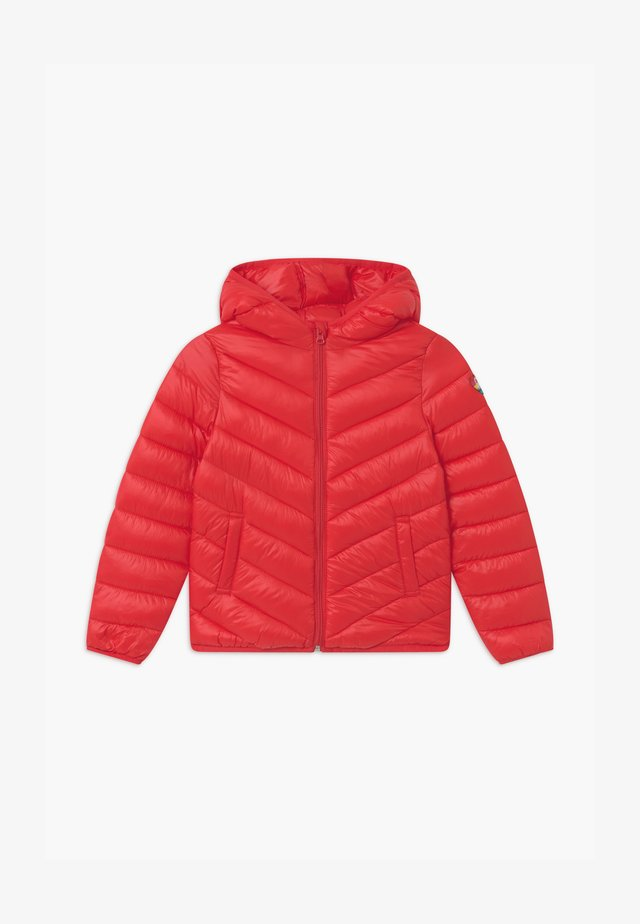 BASIC GIRL - Winter jacket - red