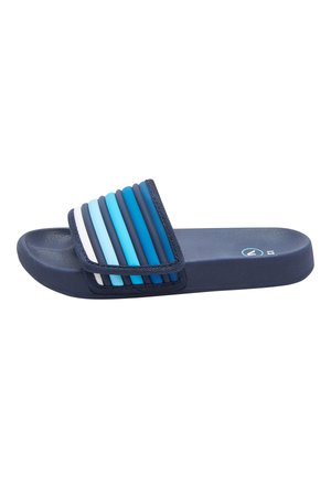 Pool slides - blue