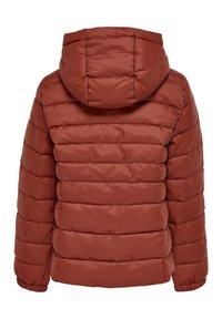 Kids ONLY - Winter jacket - burnt henna - 1