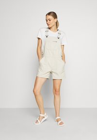 Patagonia - STAND UP OVERALLS - Sports shorts - dyno white - 1