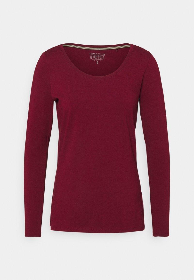 Esprit - CORE - Maglietta a manica lunga - bordeaux/red