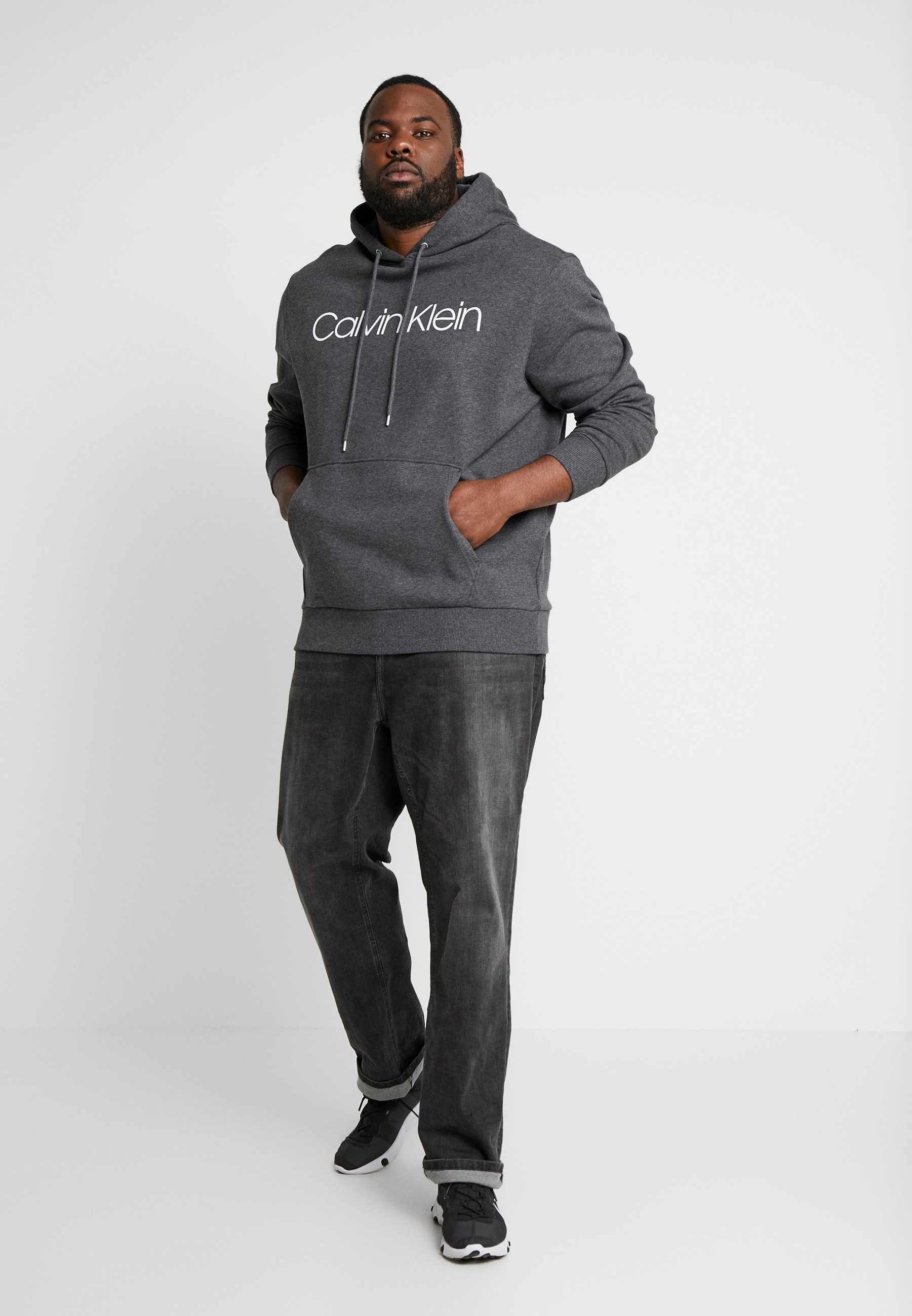 Calvin Klein LOGO HOODIE - Sweat à capuche - grey