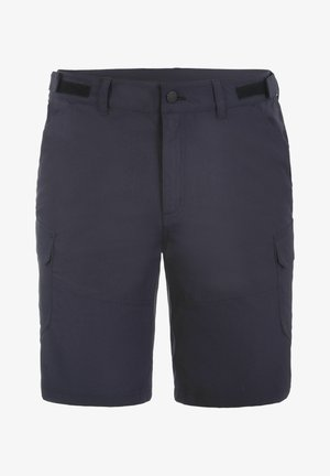 BRASWELL  - Outdoor shorts - anthracite