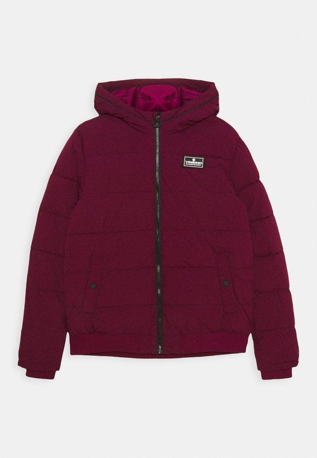 TANJU - Winter jacket - grape red