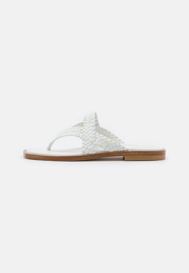 ROSIE FLAT  - Sandály s odděleným palcem - white