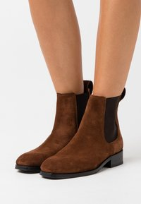 Tiger of Sweden - ELLARIA  - Classic ankle boots - dark brown - 0