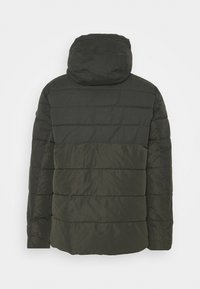 TOM TAILOR - Winter jacket - shadow olive - 1