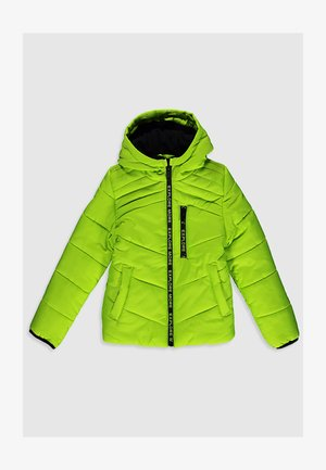 DICKE - Winter jacket - green