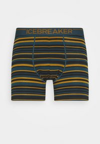 Icebreaker - MENS ANATOMICA BOXERS - Pants - curry - 0