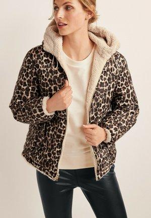 REVERSIBLE DUPONT - Zimní bunda - brown
