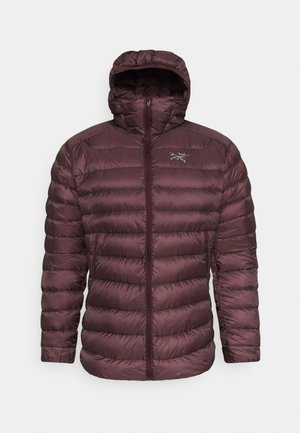 CERIUM HOODY MEN'S - Down jacket - rhapsody