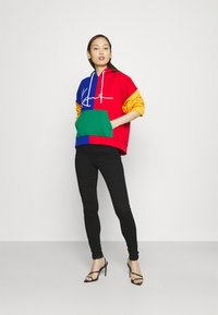Karl Kani - SIGNATURE BLOCK HOODIE - Sweatshirt - multicolor - 1