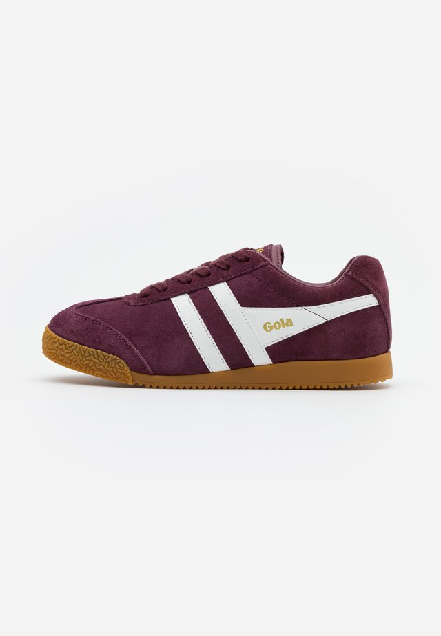 HARRIER  - Sneakers basse - windsor wine/white