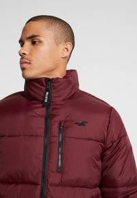 Hollister Co. - PUFFER MOCK BURG - Winter jacket - burgundy - 4