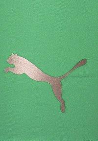 Puma - LIGA BASELAYER TRAININGSTIGHT HERREN - Shorts - green glimmer - 2