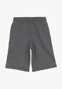 Lacoste Sport - CLASSIC - Träningsshorts - pitch - 1