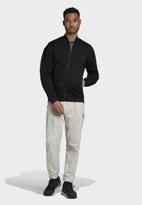 adidas Performance - TERREX HIKERELAX TROUSERS - Trousers - grey - 1