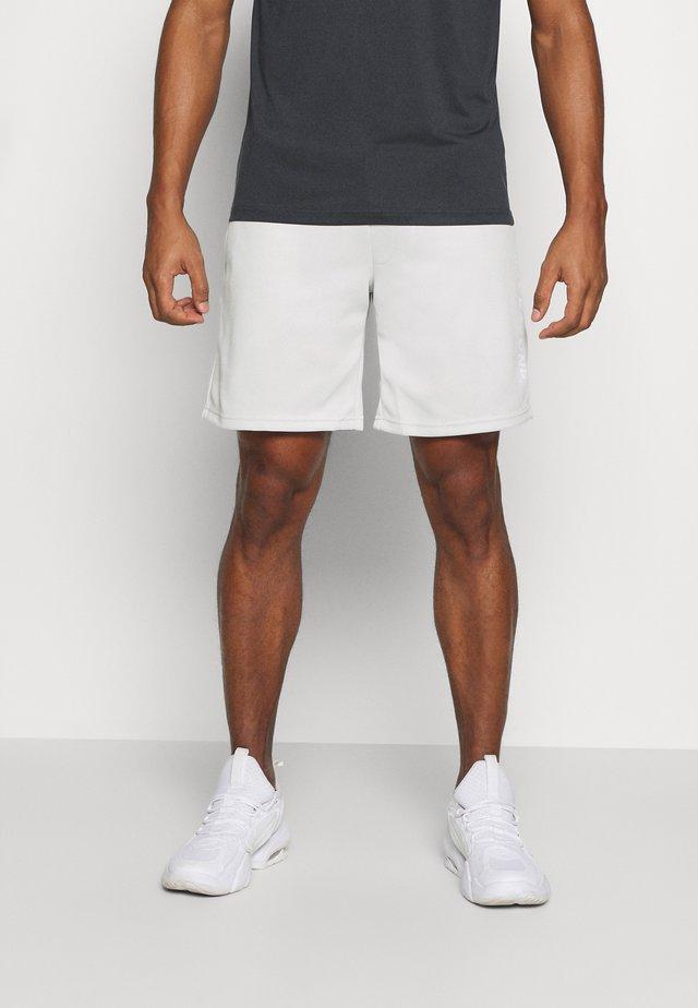 JCOZBIG LOGO SHORTS - Pantaloncini sportivi - light gray