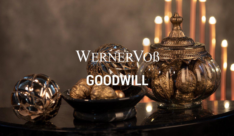 WERNER VOSZ + GOODWILL à super prix sur ZALANDO PRIVÉ